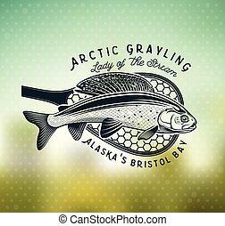 mosca, grayling, logo., pesca, río, dama