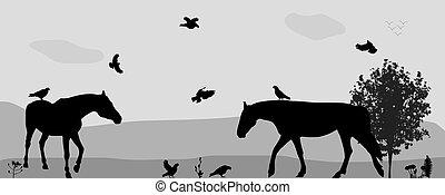 mosca, illustration., passeio, nature., coney, vetorial, pássaros