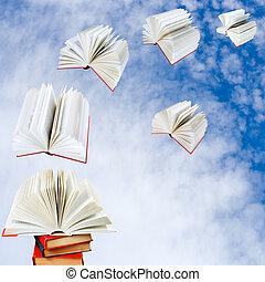 mosca, livros, pilha, saída