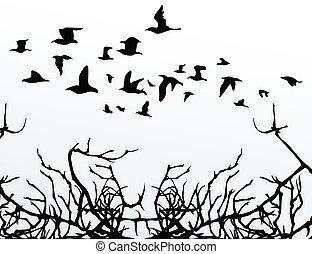 moscas, vuelo, encima, ilustración, vector, wood., aves
