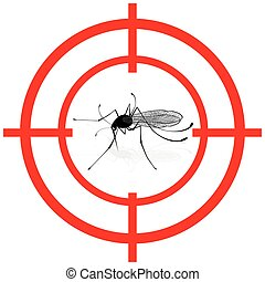 moscerino, bersaglio, misure sanitarie, istituzionale, segnale, mira, relativo, zanzare, segnalazione, zanzara, vector., care., informativo, ideale