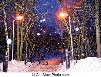 moscou, Parc, hiver, nuit