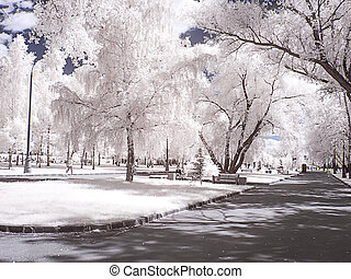 Moscow. Alley in the park. Infrared photography