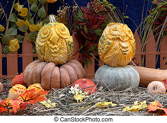 """Owl pumpkins at the festival """"Golden autumn"""" in Moscow"""