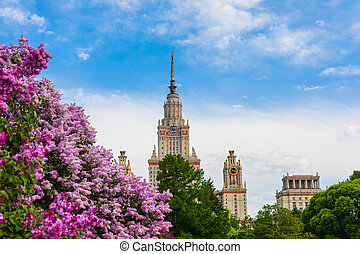 Moscow State University building with the blossoming lilac bushes