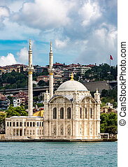 Mosque In Instanbul, Turkey - One of the 2990 active mosques...