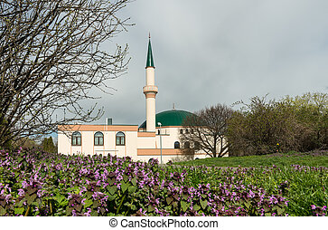 Mosque in Vienna on a cloudy day in spring