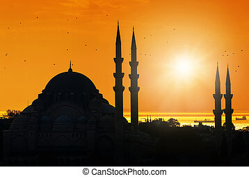 Mosque silhouette during sunset in Istanbul Turkey,...