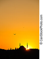 Mosque Silhouette - Silhouette of a Mosque in Istanbul with...
