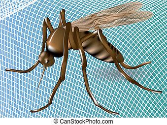 mosquiteiro, e, pernilongo