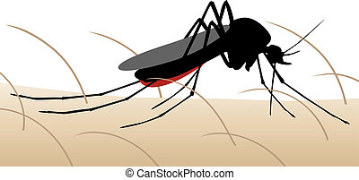 Mosquito bite - Editable vector illustration of a mosquito...