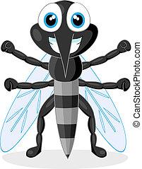 mosquito, lindo