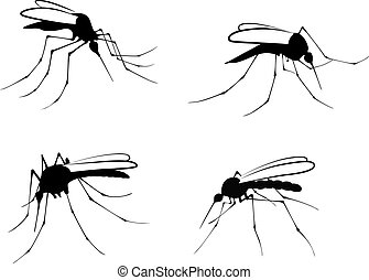 mosquitoes - Silhouettes mosquito - vector illustration