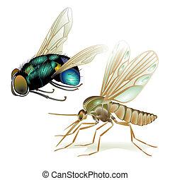 mosquitos, e, moscas