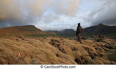 moss-covered lava fields - Tourist observing the expansive...