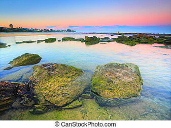 Moss covered rocks on the reef shelf, Australia - Moss...
