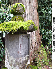 Moss on a Japanese Grave
