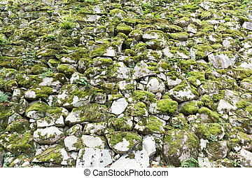 Moss on the rock wall