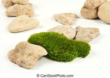 moss - Green moss and grey stones on a white background