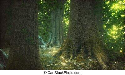 mossed, primordial, forêt, terrestre