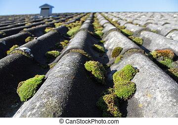 Mossy eternit roof
