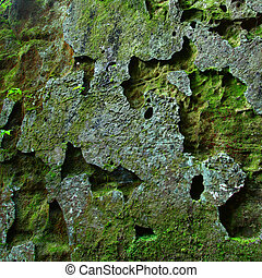 Mossy rock background