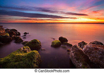 mossy rocks in the ocean during sunset
