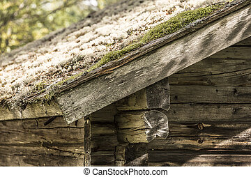 Mossy Roof on Timber Lodge