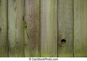 Mossy wooden fence
