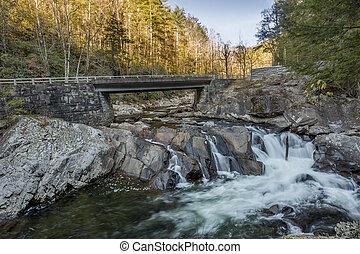 most, potok, na, -, cascading, jesień, tennessee