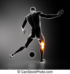 Most stressed sportsman joint KNEE