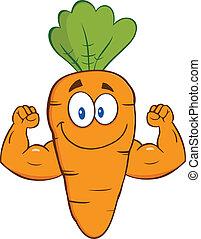 mostrando, cenoura, braços, músculo