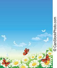 motýl, a, květiny