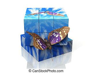 motýl, kostka, let, ono, rubik's, aut