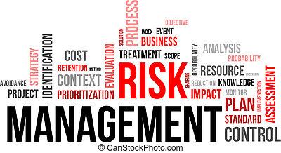 mot, gestion, -, risque, nuage