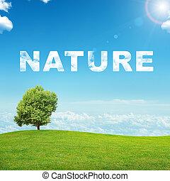 mot, paysage,  nature
