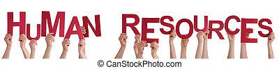 mot, tenue, gens, rouges, mains humaines, ressources