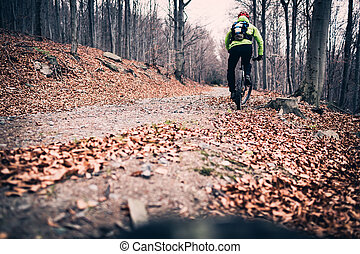 motard montagne, bois, cyclisme, piste