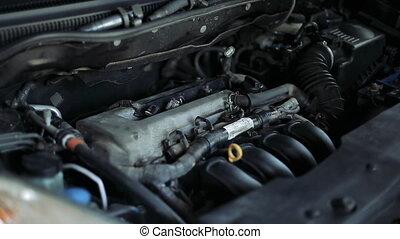 moteur, changements, bouchons, étincelle, mécanicien, auto, mâle, voiture