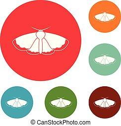 moth, koło, komplet, wektor, ikony