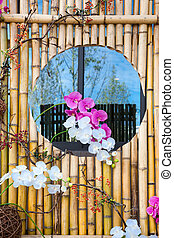 moth orchid - Moth orchid on the bamboo frame wall with...