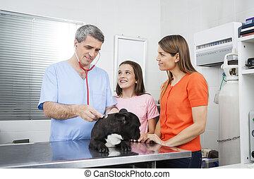 Mother And Daughter Looking At Vet Examining Bulldog