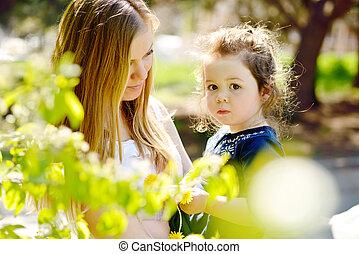 in blossom garden