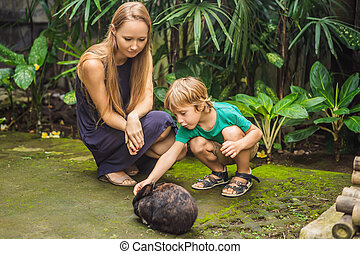 Mother and son feeds the rabbit. Cosmetics test on rabbit animal. Cruelty free and stop animal abuse concept