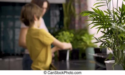 Mother and son planting seedlings at home. Mom helps the boy with potted plants. An independent child is busy with a hobby. Happy family spent time together, lifetime concept. Focus on the foreground on green plants. People are blurred in the background.