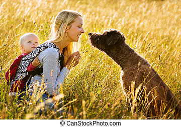 Mother, daughter and a dog in a meadow - Young mother with...