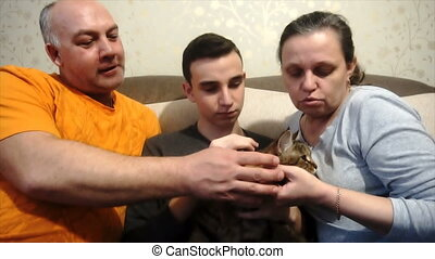 mother father and son playing with a cat, a happy family
