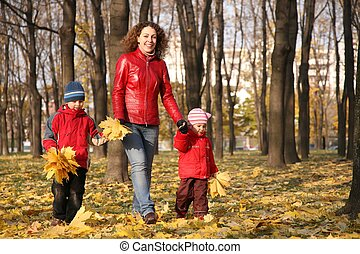 mother goes for a walk with the children in the park in autumn with yellow leaves