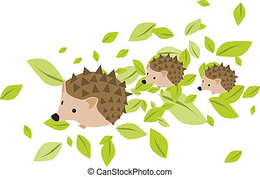 Mother hedgehog with babies - Mother hedgehog with two...