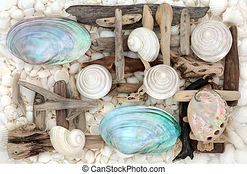 Mother of Pearl Seashell Abstract - Mother of pearl shells...